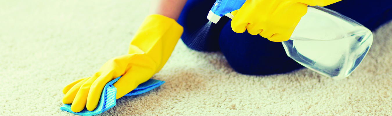 carpet cleaning seo